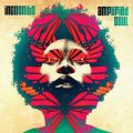Incognito - Amplified Soul (2014)
