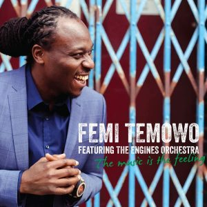 Femi Temowo - The Music Is the Feeling (2016)