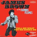 James Brown and The Famous Flames - Tell Me What You're Gonna Do plus Shout And Shimmy (2013)