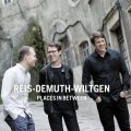 Reis-Demuth-Wiltgen - Places In Between (2016)