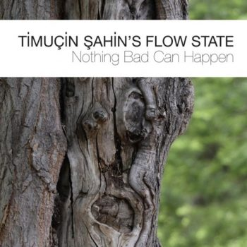 Timuçin Şahin's Flow State - Nothing Bad Can Happen (2017)