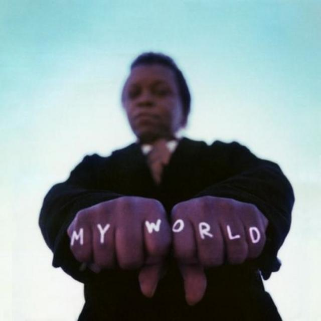 Lee Fields & The Expressions - My World (2009)