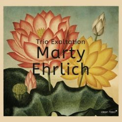 Marty Ehrlich - Trio Exaltation (2018)