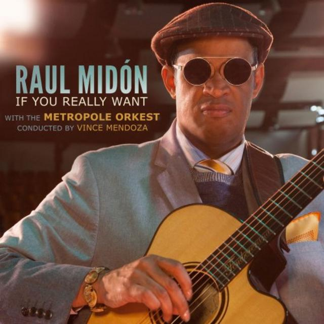 Raul Midón - If You Really Want (2018)