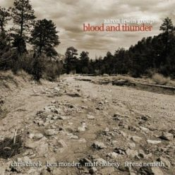 Aaron Irwin Group - Blood and Thunder (2008)