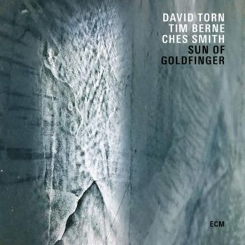 David Torn, Tim Berne & Ches Smith - Sun Of Goldfinger (2019)