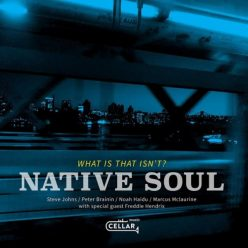 Native Soul - What Is That Isn't? (2019)