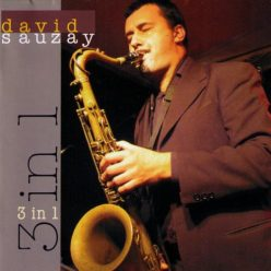 David Sauzay - 3 in 1 (2007)
