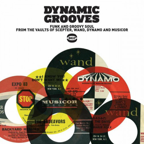 VA - Dynamic Grooves - Funk And Groovy Soul From The Vaults Of Scepter, Wand, Dynamo And Musicor (2011)